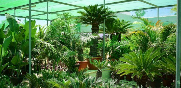 garden ala 30 centro de jardinería