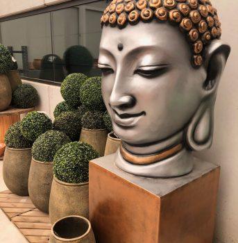 ala 30 centro de jardinería garden decoración